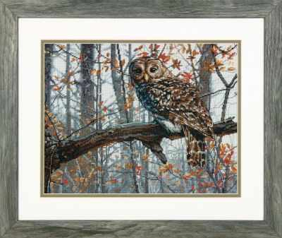 35311-70-DMS  Wise Owl